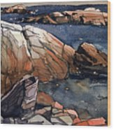 Acadia Rocks Wood Print by Donald Maier