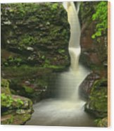 Pennsylvania Adams Falls Wood Print