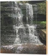 Aden Hill Waterfall Wood Print by Kevin Croitz