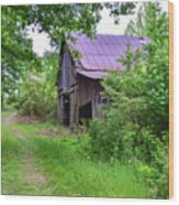 Aging Barn In Woods Series Wood Print