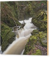 Aira Force Lower Stone Bridge Wood Print