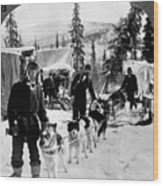Alaskan Dog Sled, C1900 Wood Print