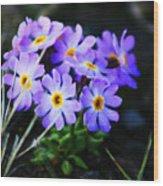Alaskan Wild Flowers Wood Print