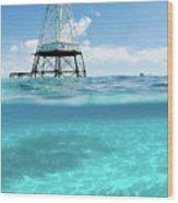 Alligator Reef Lighthouse Wood Print