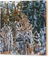 Along The Walker River Wood Print