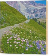 Alta Vista Trail In  Mount Rainier National Park, Washington  Wood Print