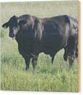 American Cow Wood Print