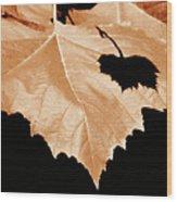 American Sycamore Leaf And Leaf Shadow Wood Print