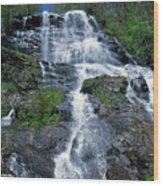 amicalola falls Ga Wood Print