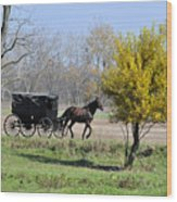Amish Buggy Late Fall Wood Print