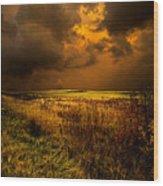 An Autumn Storm Wood Print by Phil Koch
