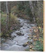 An Autumn Stream Wood Print