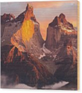 Andes Mountains Wood Print