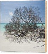 Anegada Wood Print