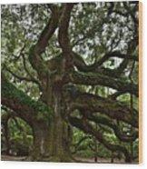 Angel Oak Wood Print