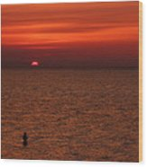 Angler In Summer Sunset Wood Print