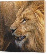 Angolian Lion Wood Print