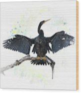 Anhinga Bird Wood Print