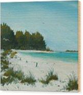 Anna Maria Beach Wood Print