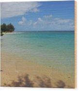 Annini Beach Wood Print