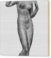 Aphrodite/venus Wood Print