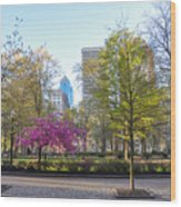 April In Rittenhouse Square Wood Print