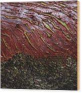 Arbutus Tree Bark Wood Print