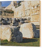 Archaeological Garden Southern Temple Mount Wood Print