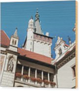 Architecture Details Of Pruhonice Castle Wood Print