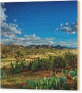 Arizona Sunrise 8 Wood Print