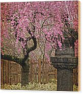 Asian Spring Wood Print by Chris Lord