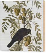 Audubon: Crow Wood Print