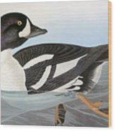 Audubon Duck Wood Print