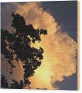 August Thunder Wood Print