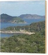 Australia - Broken Bay's Lion Island Wood Print