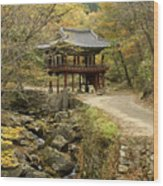 Autumn At Seonamsa Wood Print