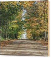 Autumn Backroad  Wood Print
