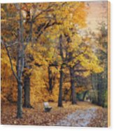Autumn By The River Wood Print