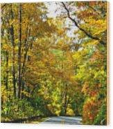 Autumn Drive No.2 Wood Print