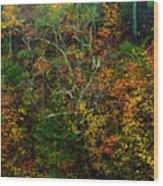 Autumn Hillside Blue Ridge Parkway Wood Print