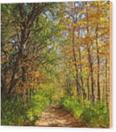 Autumn In The Park Wood Print