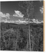 Autumn In The White Mountains Wood Print