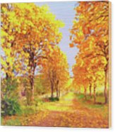 Autumn In Tuscany Wood Print
