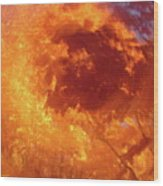Autumnal Swirl Lll Wood Print
