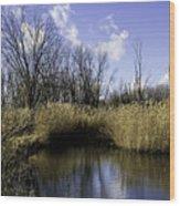 Banner Marsh Wood Print