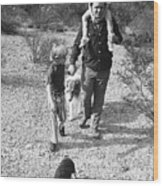 Barry Sadler With Sons Baron And Thor Taking A Stroll 1 Tucson Arizona 1971 Wood Print