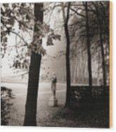 Bassin D'apollon, Versailles Wood Print