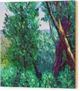 Bcsp 6 22 Wood Print
