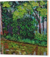 Bcsp 6 29 Wood Print