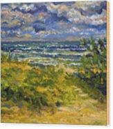 Beach At Delray Wood Print